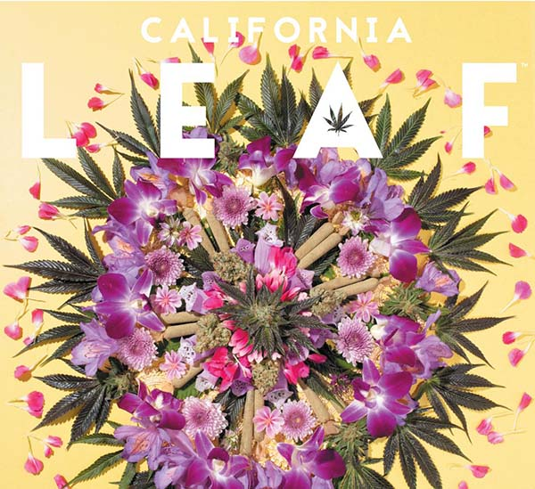 California Leaf